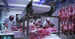 I pericoli e le malattie nel comparto della lavorazione delle carni