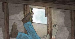 Imparare dagli errori: infortuni mortali nella riparazione di tetti