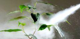 Agricoltura e fitosanitari: la normativa, le attrezzature e i controlli