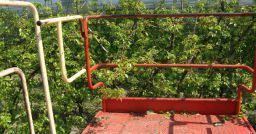 Agricoltura: una nuova norma per la sicurezza dei carri raccogli frutta