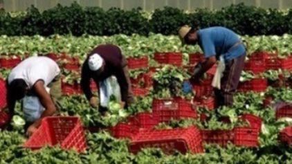 Un'indagine sulla percezione del rischio dei lavoratori immigrati