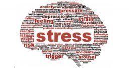 Rischio stress: un'indagine tra lavoratori, RLS e datori di lavoro
