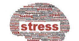 Rischio stress: linee di indirizzo per la consultazione degli RLS