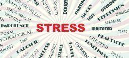 Fase propedeutica della valutazione del rischio stress lavoro-correlato