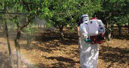 Formazione all'uso sicuro e sostenibile dei prodotti fitosanitari