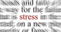 Imparare dagli errori: perché non affrontare lo stress?